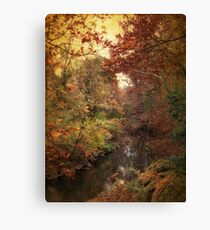 Overlook Canvas Print