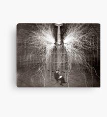 Tesla In Study Canvas Print