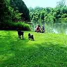 Fishing With The Dogs by Linda Miller Gesualdo