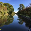 Autumnal canal view by CruisingTheCut