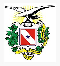 The Coat of Arms of Pará Photographic Print