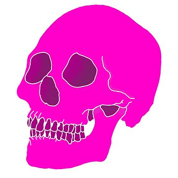 Aesthetic Skull by Hamishsellers