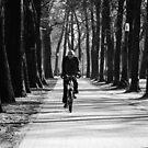 Cycle by jogogou