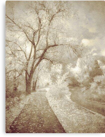 Autumn's Last Breath by Tara  Turner
