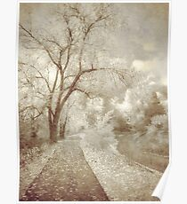 Autumn's Last Breath Poster