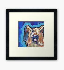 Briard Dog Bright colorful pop dog art Framed Print