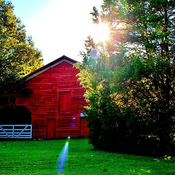 Sun Shining Over Red Barn by Cynthia48