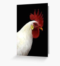 Cluck, Cluck! © Greeting Card