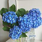 Dark blue Hydrangea by Gilberte