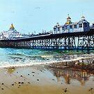 Seaside Gold  by Paula Oakley