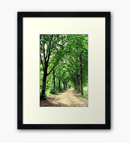 Jardingapad in Spring Framed Print
