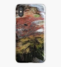 Beauty in decay iPhone Case/Skin