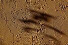 Zen Shadows by martinilogic