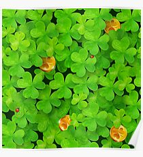 Saint Patrick's clovers pattern with golden coins and ladybugs Poster