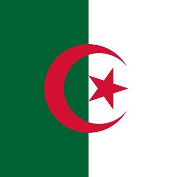 Flag of Algeria by virginia50