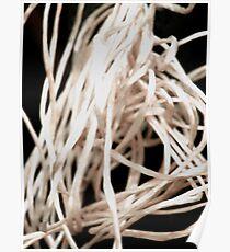 String Poster