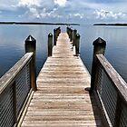 Dock by Craig Bernstein