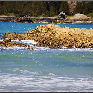 On the coast of Batemans Bay by ausigreybear