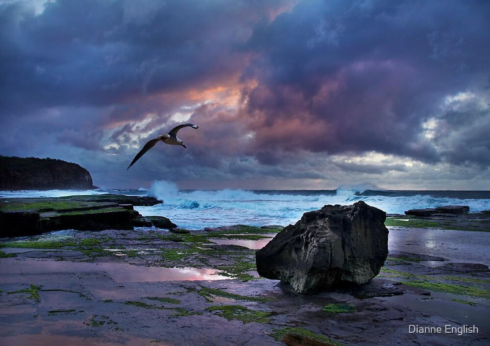Turimetta Morning by Dianne English