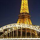 Eiffel tower, Paris, France by mistyrose