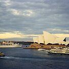 Departing Sydney Harbour, Sydney, NSW, Australia by C J Lewis