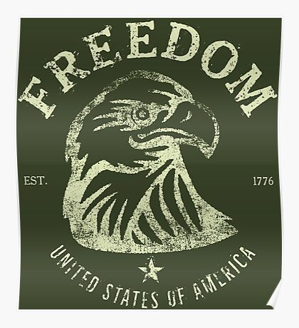 American Freedom & Bald Eagle Poster