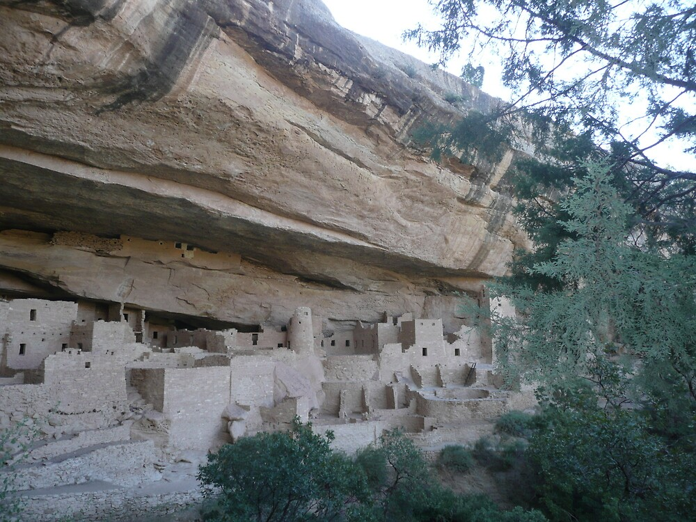 Cliff Palace, Mesa Verde NP, U.S.A. by Mywildscapepics