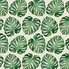 Monstera leaves von CatyArte