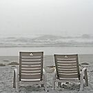 Fogged In - White Point, Nova Scotia by Darlene Ruhs