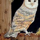 A Barn Owl in a barn - where else! by veroniquecole
