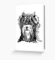 Biewer Terrier  Greeting Card