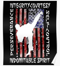 American Martial Arts 5 Tenates of Taekwondo Poster
