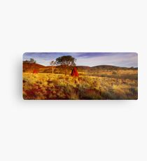 Morning Light on the Pilbara - Western Australia Metal Print