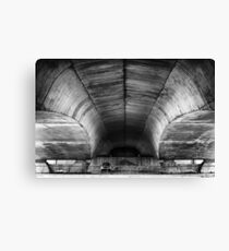 Hovering heavyweight Canvas Print