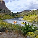 Floating Down The Rio Grande  by Lanis Rossi