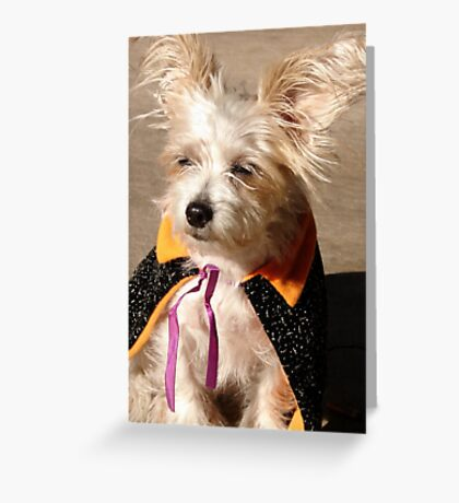 The Great Missy Greeting Card