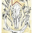 Elder Futhark 14. Perthro by Haunting Beauty Art by hauntingbeauty