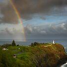 Hawaii by pljvv
