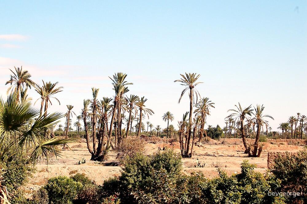 Moroccan desert by bevgeorge
