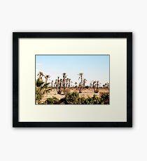 Moroccan desert Framed Print