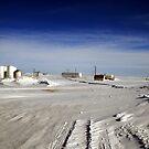 Welcome to Antarctica??? by Vivek Bakshi
