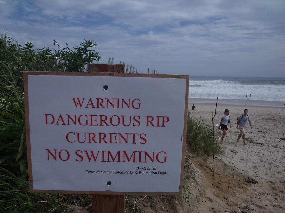 Dangerous Waters of Hurricane David by TJ Trubert