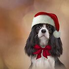 Cavalier King Charles Spaniel in red hat of Santa Claus  by bonidog