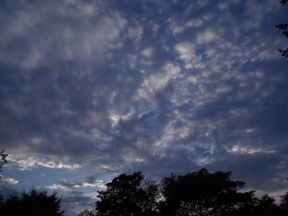 Bridgehampton Sky by TJ Trubert