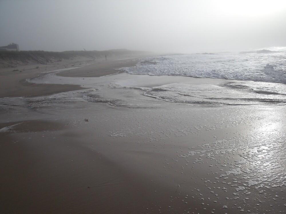 Foggy Beach During Hurricane David by TJ Trubert