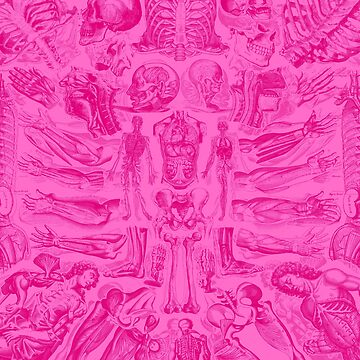 Anatomically Correct Pattern - Pink by adamcampen
