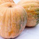 Pumpkins by Kasia-D