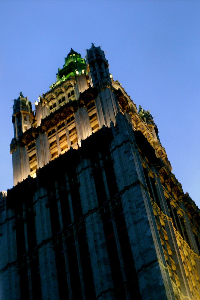 Woolworth Building,  New York by Koon