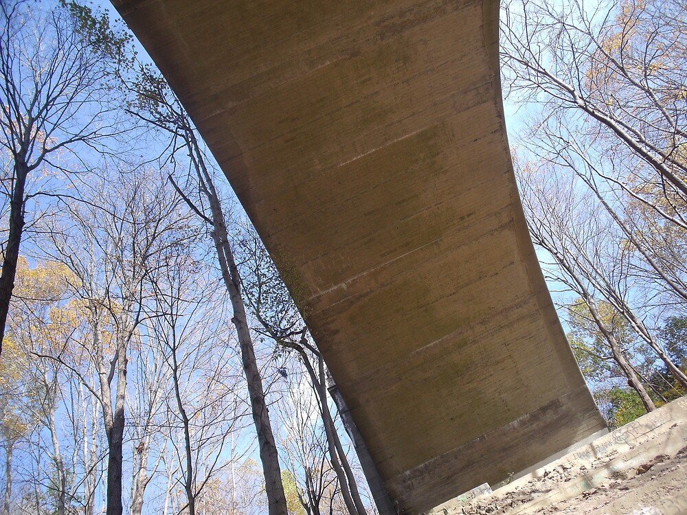 Paulinskill Viaduct Over the Delaware by TJ Trubert
