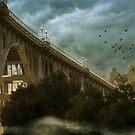 Suicide Bridge by Lydia Marano